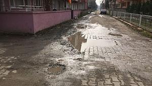 Arifiye Belediyesi Vatandaşa Hizmet Etmiyor