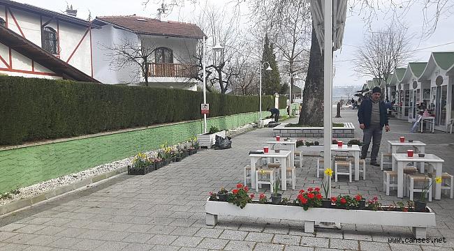 Öğrenciler Sanat Sokağı'nı Çiçeklerle Süsledi