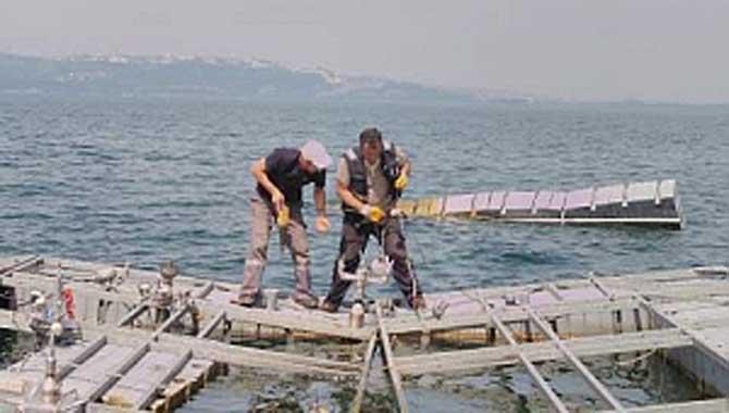 FISKİYE KALDIRILDI