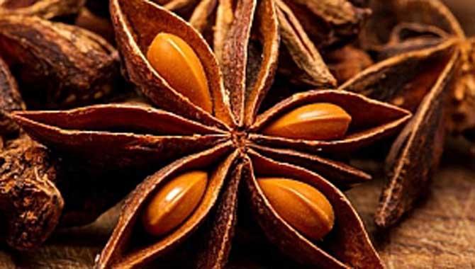 Yıldız anason faydaları neler? Yıldız anason çayı nasıl hazırlanır?