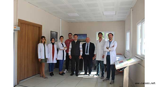 Ferizli'ye 4 yeni hekim atandı