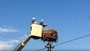 Enerji çalışanları haftası başladı!