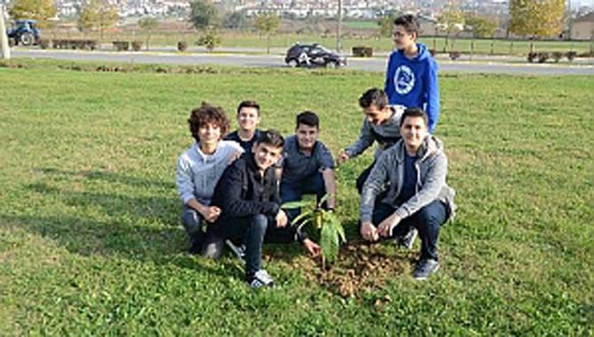 Meyve fidanları toprakla buluştu