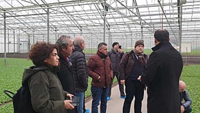 Sakarya Ticaret Borsası Avrupa'nın en büyük turp üretim serası Yılmaz Radijts 'i ziyaret etti.