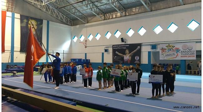 AnaLig Cimnastikte Yıldızlar Geçidi