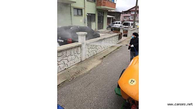 Sapanca'da Sokaklar Dezenfekte Ediliyor