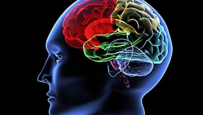 Dikkat! Bu belirtiler Beyin Sisini işaret ediyor