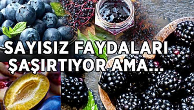 MAVİ-MOR RENKLİ 5 YAZ MEYVESİ!