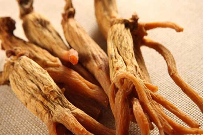 Kırmızı Kore Ginseng nedir ?