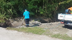 Sapanca Belediyesi Larva İlaçlaması Yapıyor