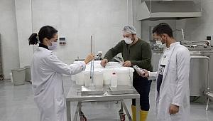 Pamukova'ya özgü süt ürünleri geliştirilecek