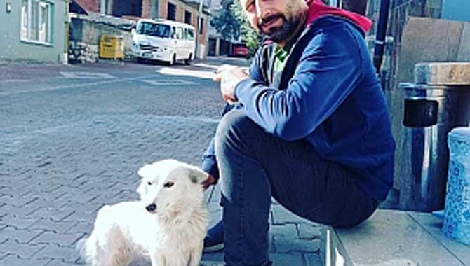 Sokak Hayvanları için Topluyor