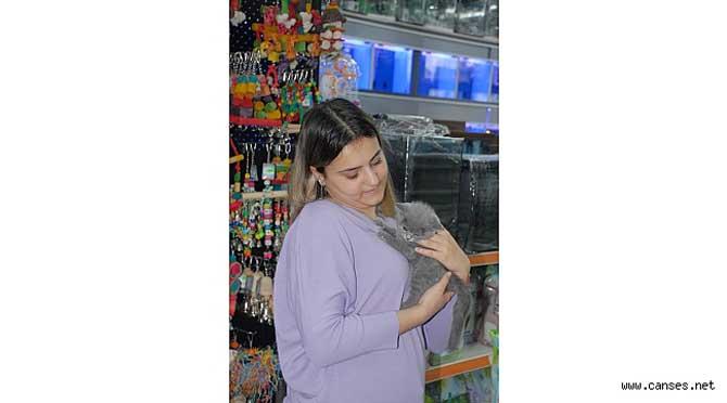 Sokak hayvanlarına da duyarlı Dost Petshop; hizmette