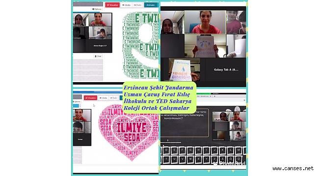 9 Mayıs E-Twinning Günü'nü online olarak kutladılar