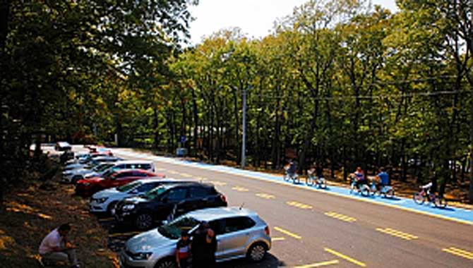 """""""Her köşesine yenilik kattığımız parkımız Sakaryalı bekliyor"""" Şehrin yeşil cenneti: Büyükşehir İl Ormanı"""