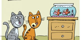 Cat & Keet